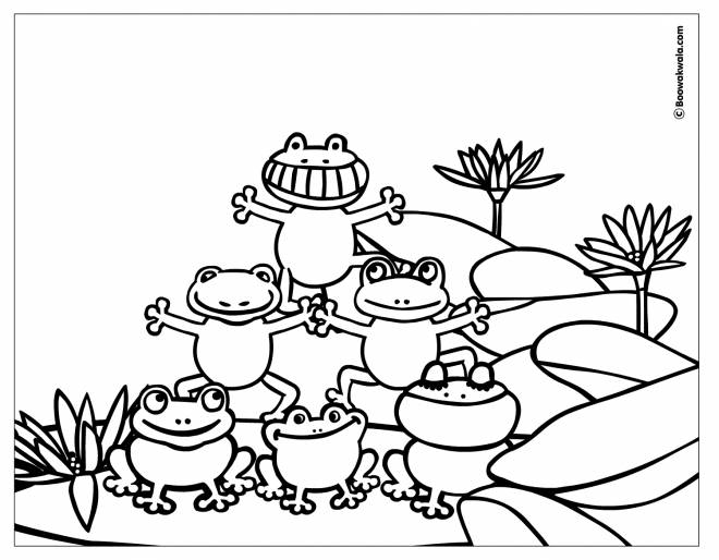Free coloring and drawings Acrobats frogs Coloring page