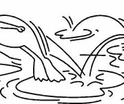 Coloring pages Frog jumps on water lily