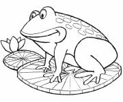 Free coloring and drawings Frog on color water lily Coloring page