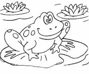 Free coloring and drawings Frog on water lily Coloring page