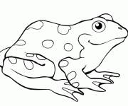 Coloring pages Frog to download