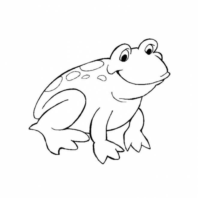 Free coloring and drawings Green frog Coloring page