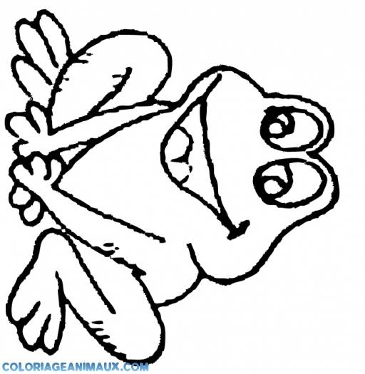 Free coloring and drawings Laughing frog Coloring page