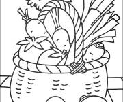 Coloring pages Basket of Vegetables and Fruits