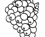 Coloring pages Fruit Maternal Grape