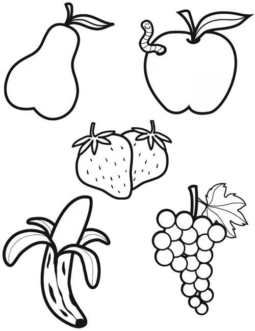 Free coloring and drawings Vector fruit Coloring page