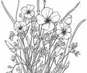 Coloring pages Adult flowers in pencil