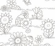 Coloring pages Fields and Butterflies