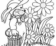 Coloring pages Garden Flowers and Fruits