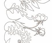 Coloring pages Plants in the Garden