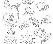 Coloring pages Funny insects