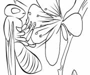 Coloring pages Insect and food