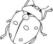 Free coloring and drawings Insect in Spring Coloring page