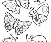 Coloring pages Insects in easy color