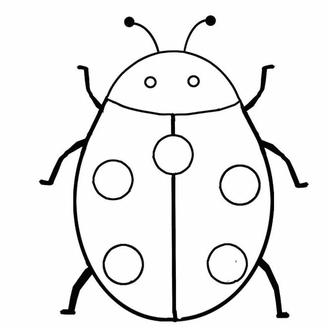 Free coloring and drawings Ladybug easy to color Coloring page