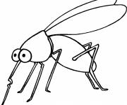 Coloring pages Mosquito insect