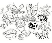 Coloring pages Outdoor insects