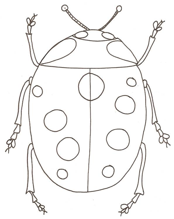 Free coloring and drawings Simple ladybug Coloring page