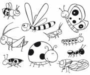Coloring pages Striped insects