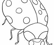 Coloring pages Color ladybug to cut