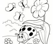 Coloring pages Ladybug and garden insects