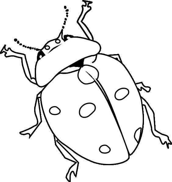 Free coloring and drawings Ladybug and its long antennae Coloring page