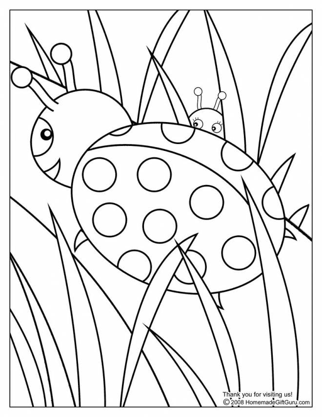 Free coloring and drawings Ladybug and nature Coloring page