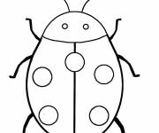 Free coloring and drawings Ladybug front view Coloring page