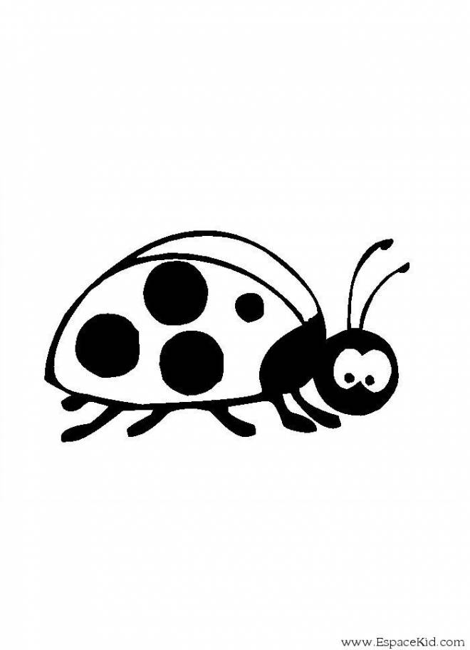 Free coloring and drawings Ladybug in black Coloring page