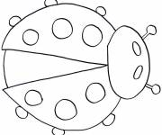 Coloring pages Ladybug insect