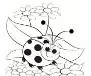 Coloring pages Ladybug model
