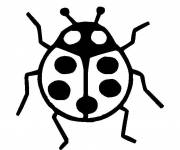 Free coloring and drawings Ladybug to decorate Coloring page