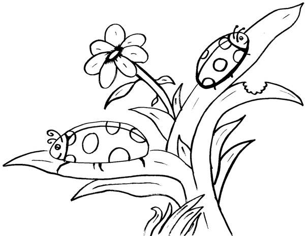 Free coloring and drawings Ladybugs having fun Coloring page