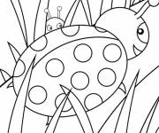 Coloring pages Ladybugs in the garden