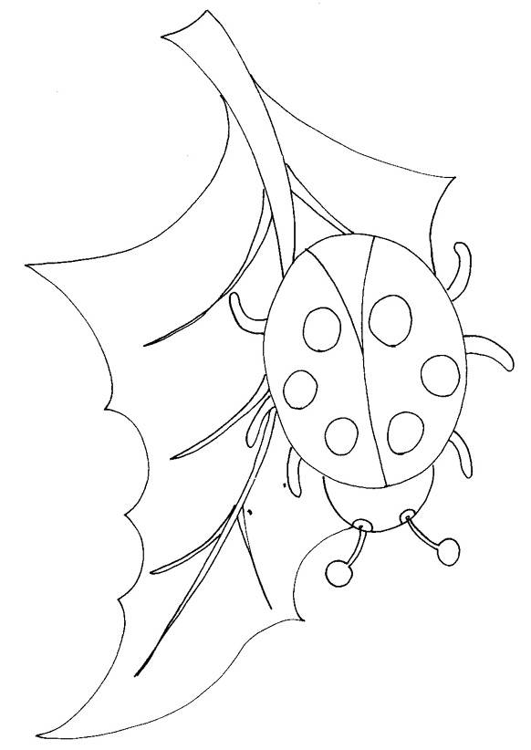 Free coloring and drawings Lucky Ladybug Coloring page