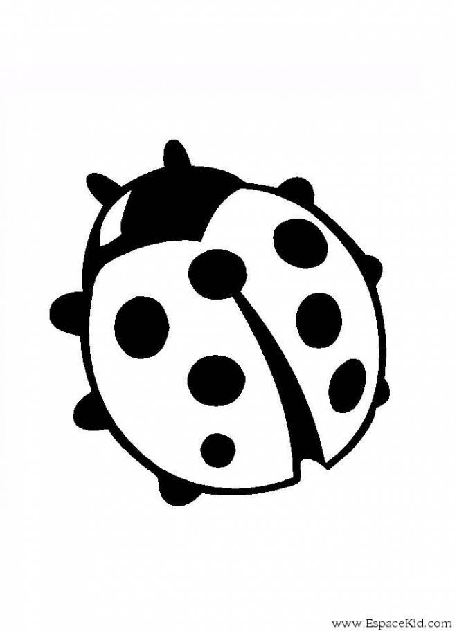 Free coloring and drawings Round ladybug Coloring page