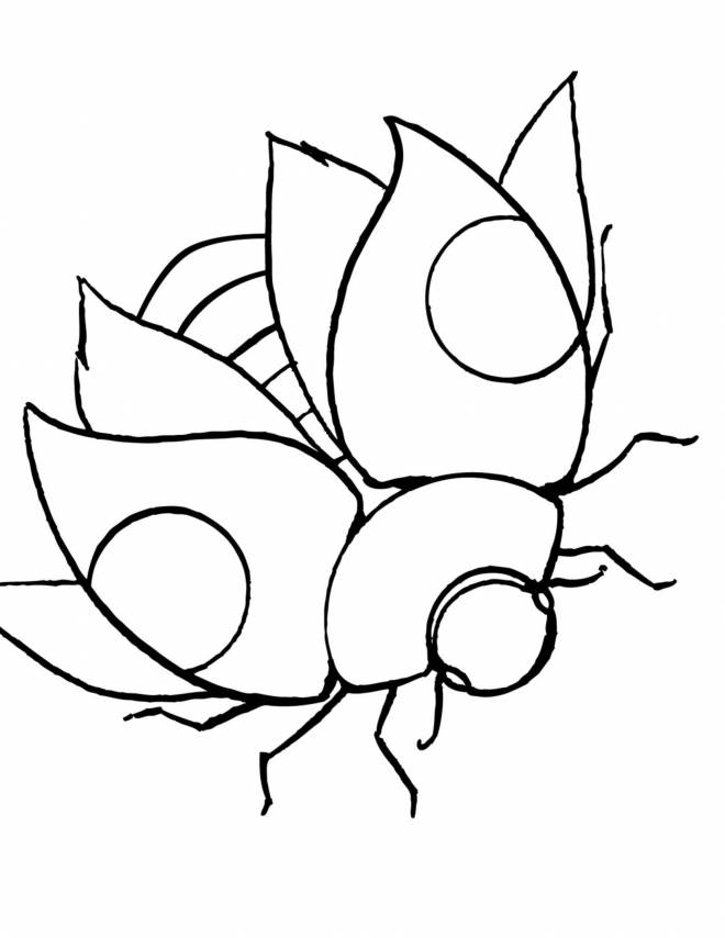 Free coloring and drawings Stylized beautiful ladybug Coloring page