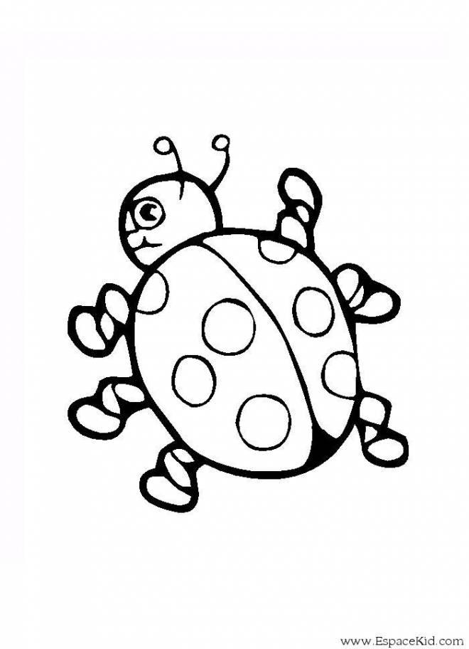 Free coloring and drawings Stylized ladybug Coloring page
