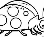 Coloring pages Surprised ladybug