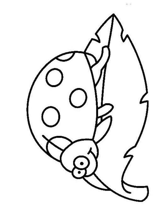 Free coloring and drawings Sympathetic ladybug Coloring page