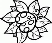 Coloring pages Vector ladybug