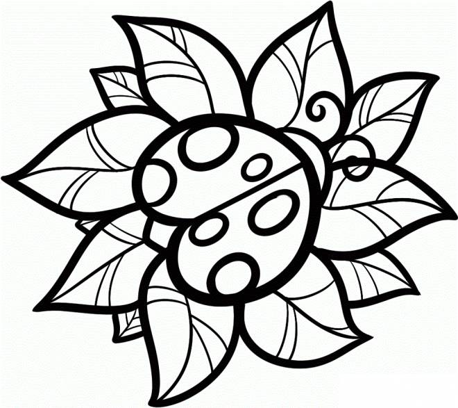 Free coloring and drawings Vector ladybug Coloring page