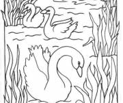 Coloring pages Carving lake