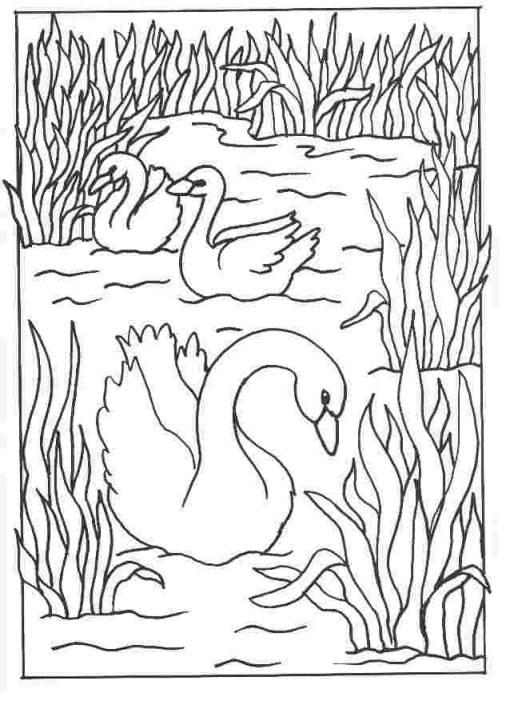 Free coloring and drawings Carving lake Coloring page