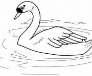 Coloring pages Color Duck Lake