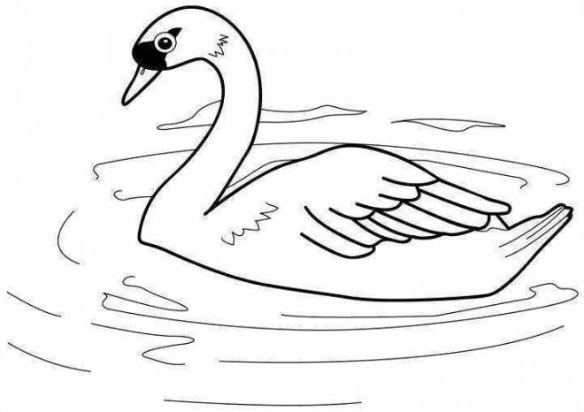 Free coloring and drawings Color Duck Lake Coloring page