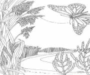 Coloring pages Lake and Nature