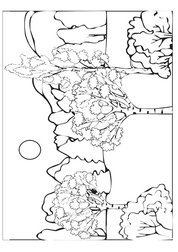 Free coloring and drawings A mountainous forest Coloring page