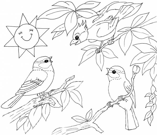 Free coloring and drawings Landscape of Singing Birds Coloring page