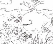 Coloring pages Seabed and fun fish